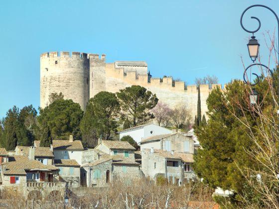 安德列城堡