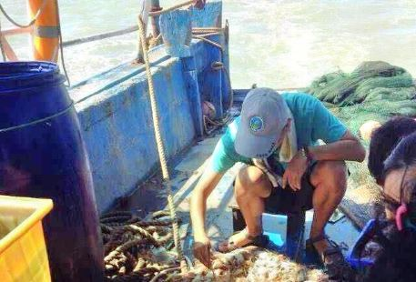 三門出海捕魚