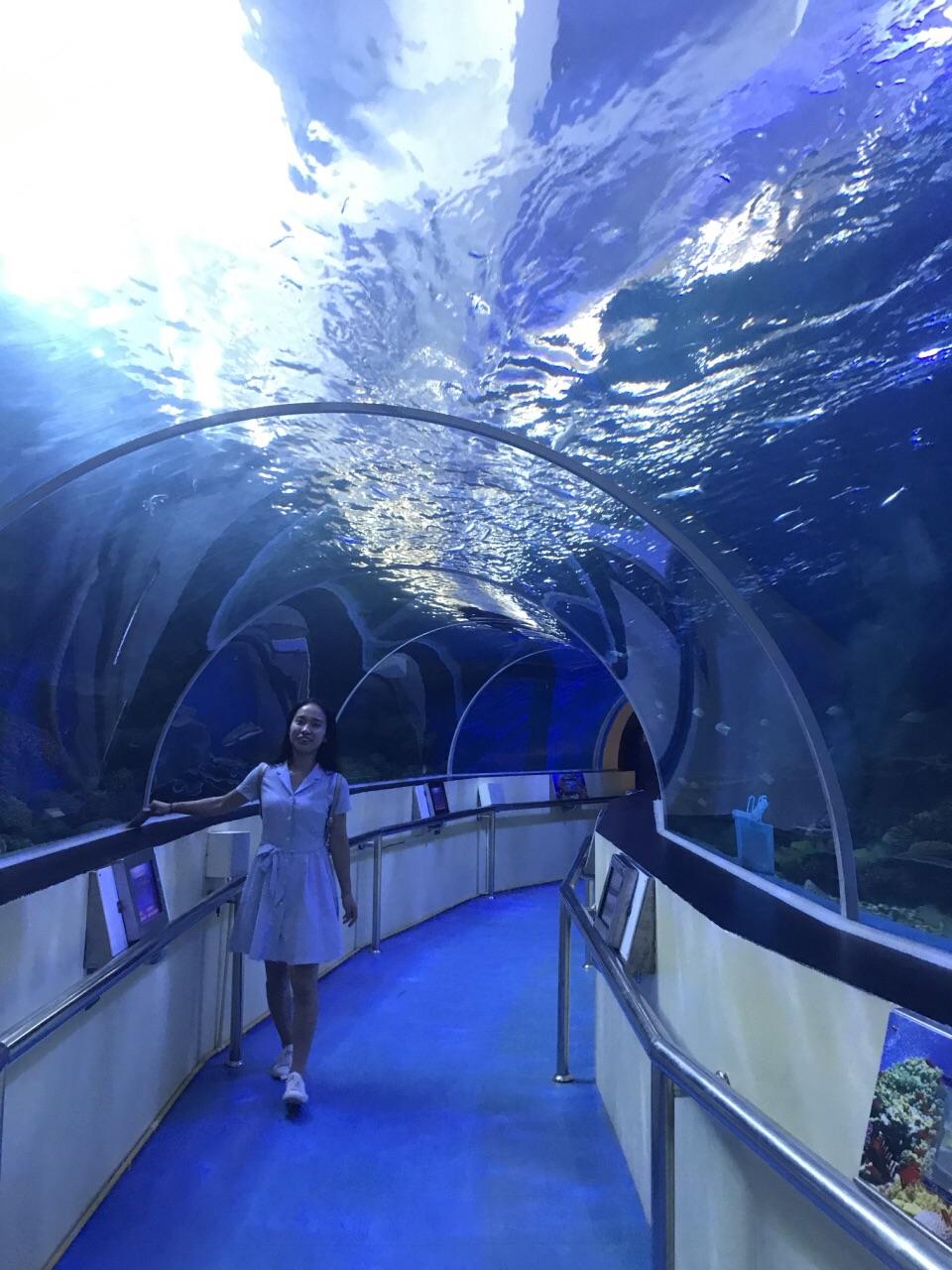 Waghor水族館