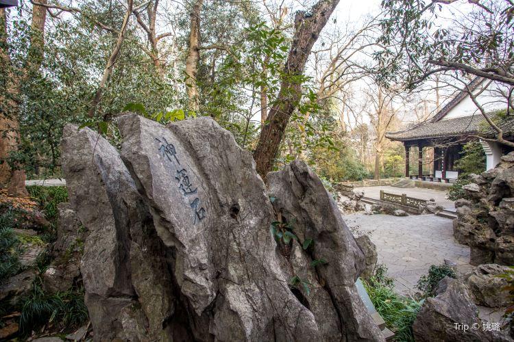 Eight Sights of Longjing3
