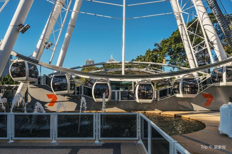 Wheel of Brisbane1