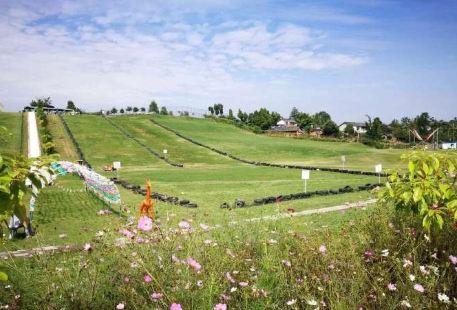 Baima Pass Sliding Grassland
