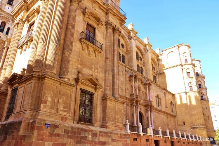 La Santa Iglesia Catedral Basílica de la Encarnacion4