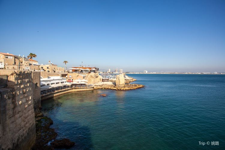 Old City of Acre1