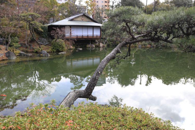 Sorakuen Garden1