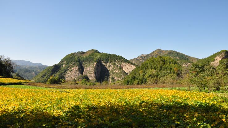 Jiulong Mountain Scenic Area3