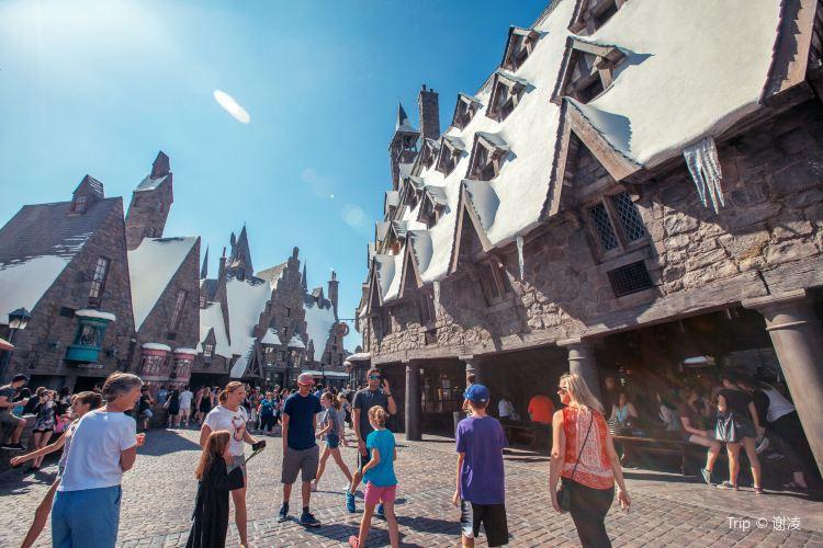 哈利波特的魔法世界1