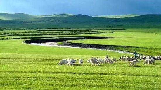雙慶羊肉館