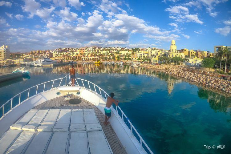 Gulf of Aqaba2