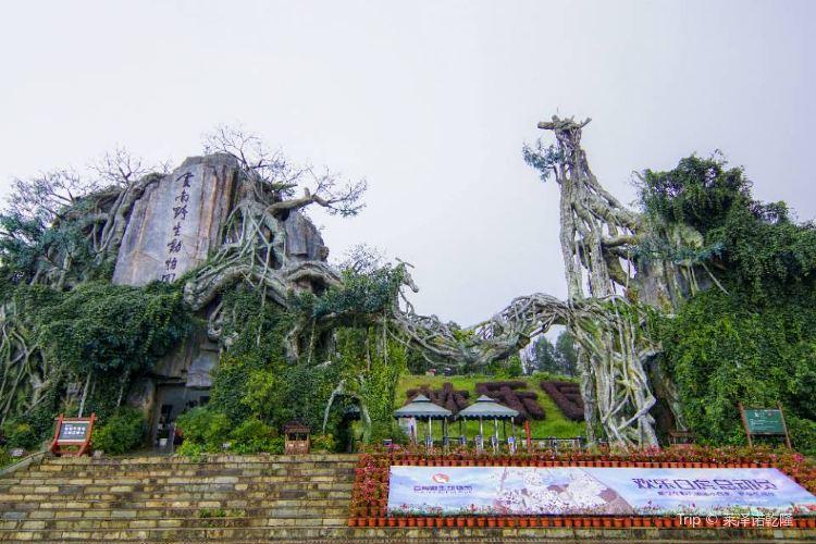 윈난성 동물원1