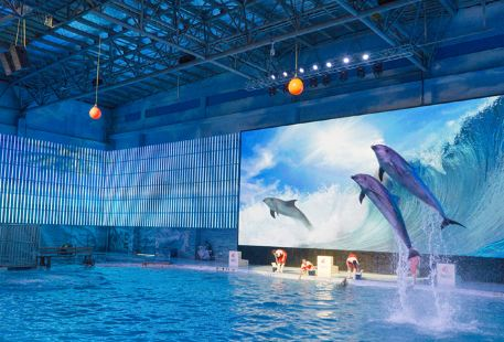 Ningbo Ocean World