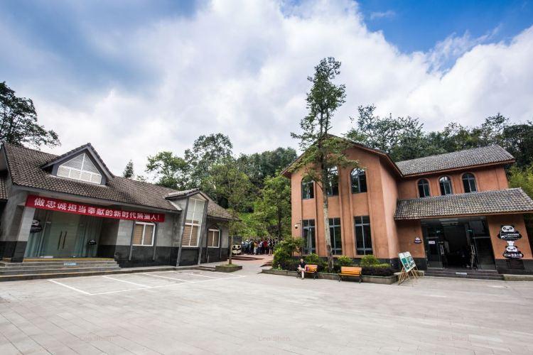 Bifengxia Panda Reserve2