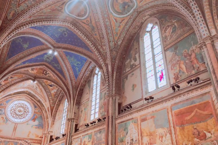 Basilica Papale di San Francesco3