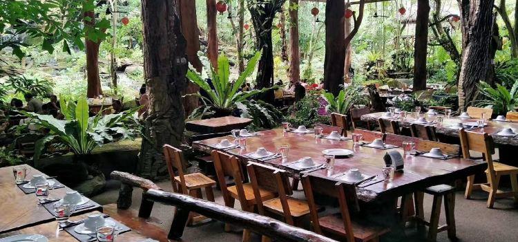 綠光森林餐廳1
