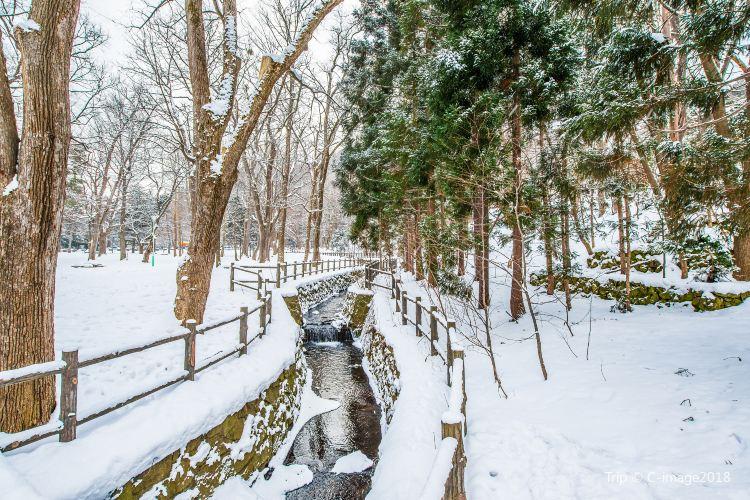마루야마공원3
