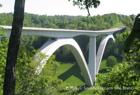 Natchez Trace Parkway