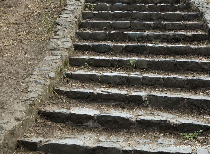 99 Steps2
