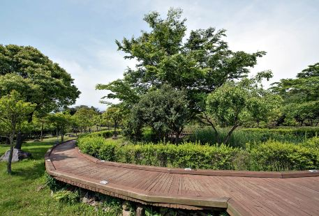 Bojie Ecological Park