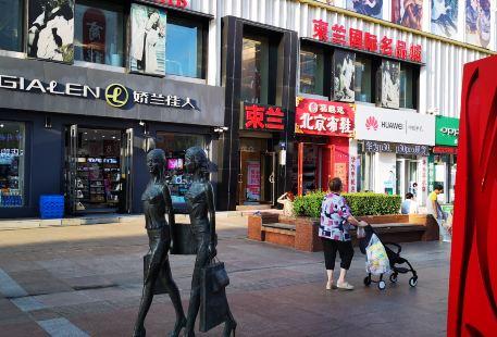 ZhongYang ShangYe BuXingJie