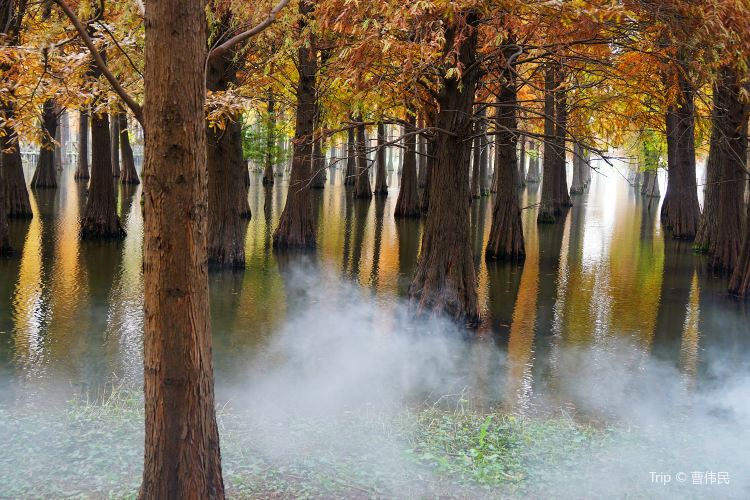 칭시 자연공원2