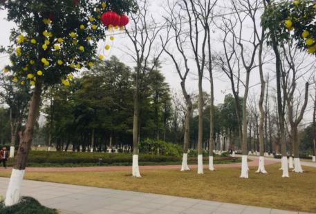 重慶蔡家中央森林公園