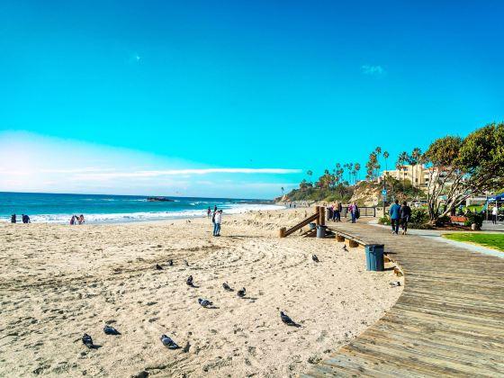 Harbor Beach Oceanside