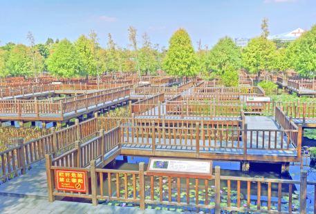 우위안만 습지공원