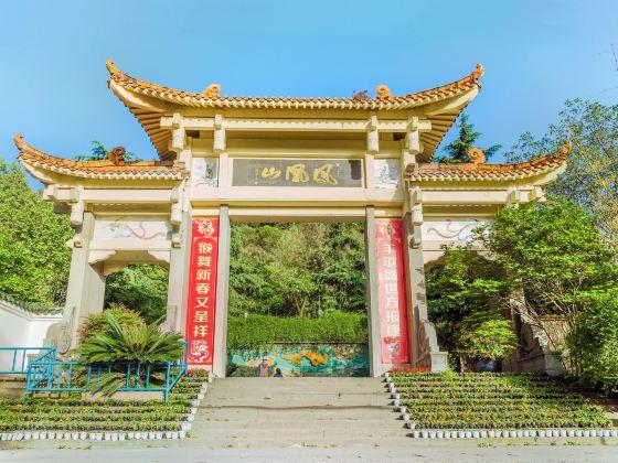 Fenghuangshan Park