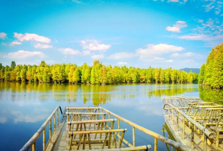 Shanghu Lake Scenic Area