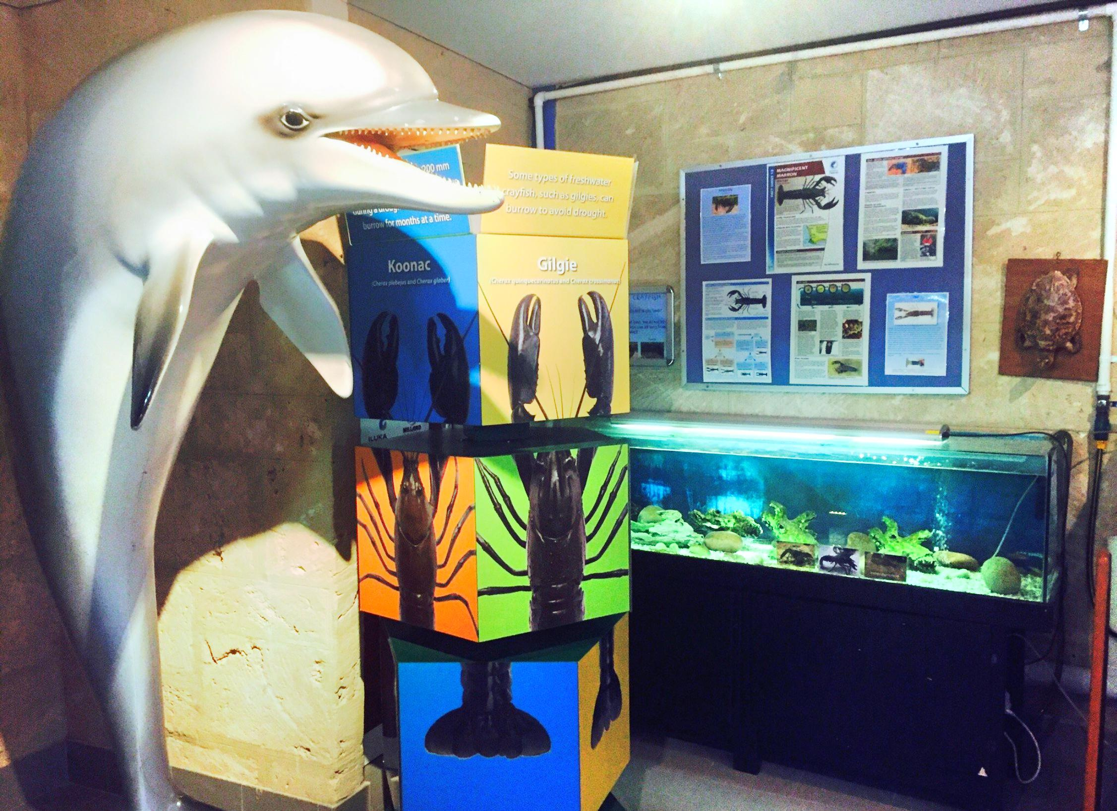 Dolphin Discovery Centre