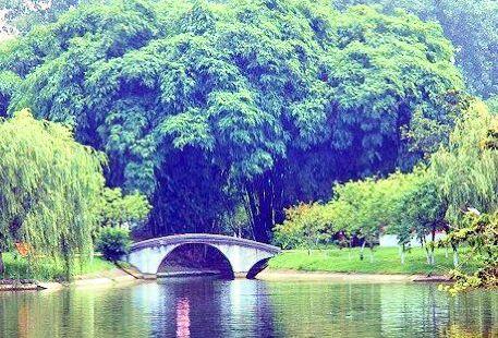 Jinyan Lake
