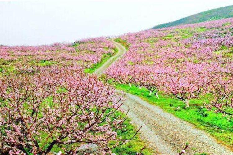 Guiyang Taohuaxi Scenic Area