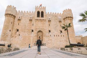 Alexandria,Recommendations