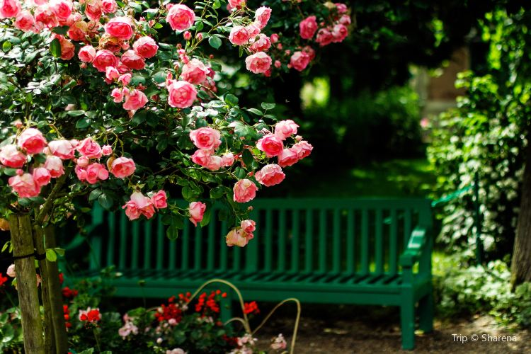Claude Monet's House and Gardens4