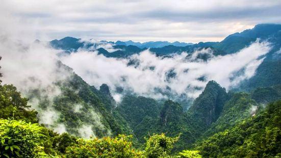 Longtan National Forest Park