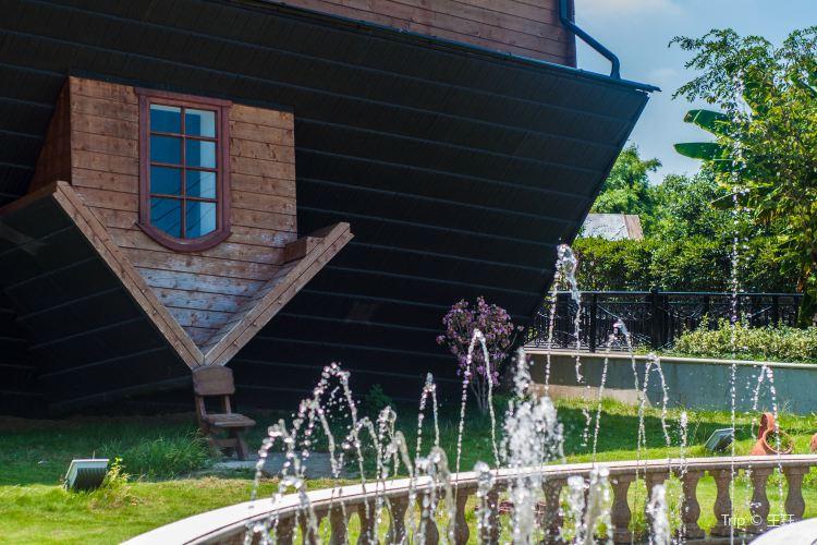 폴란드 거꾸로 된 집1