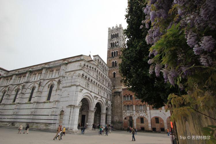 盧卡聖馬丁大教堂1