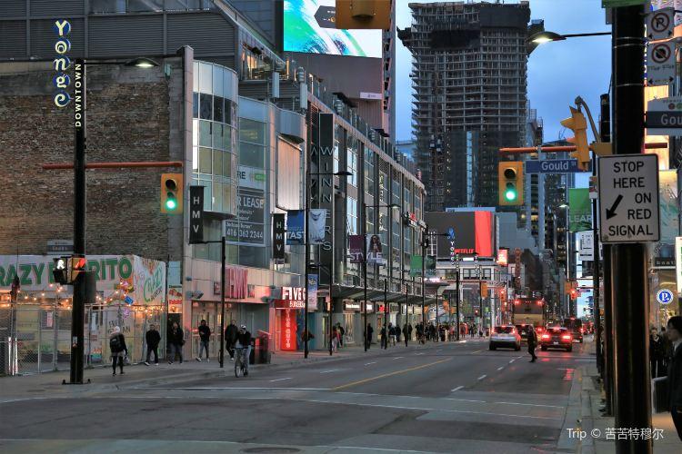 Yonge Street3