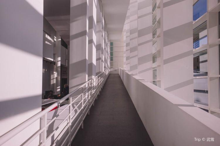 Barcelona Museum of Contemporary Art1