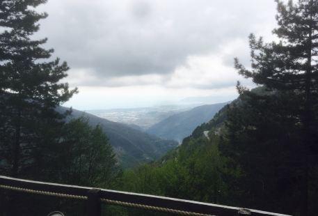 """Orto Botanico delle Alpi Apuane """"Pietro Pellegrini"""""""