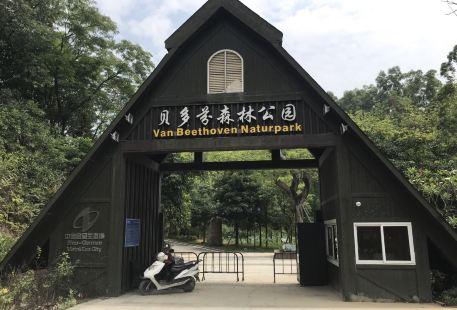 貝多芬森林公園