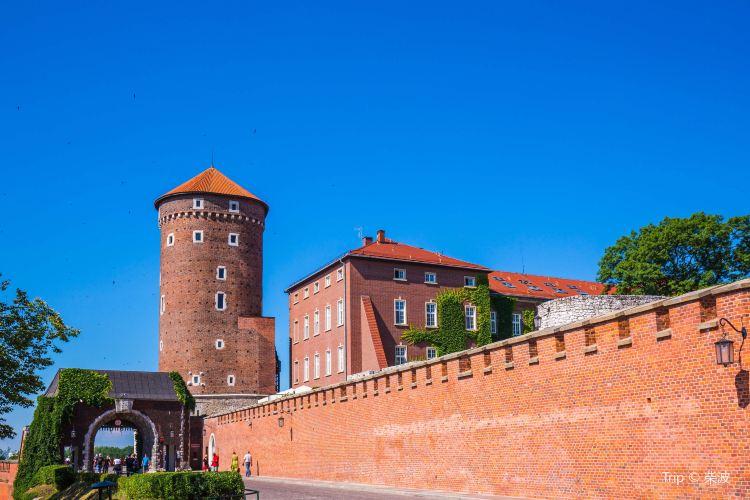 瓦維爾皇家城堡3