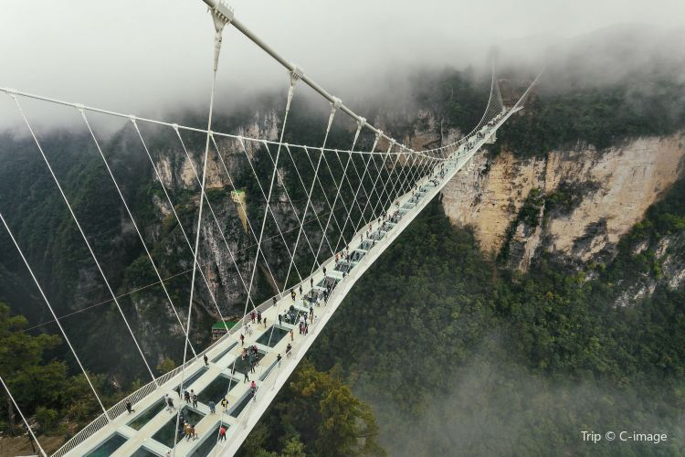Zhangjiajie Grand Canyon Glass Bridge2