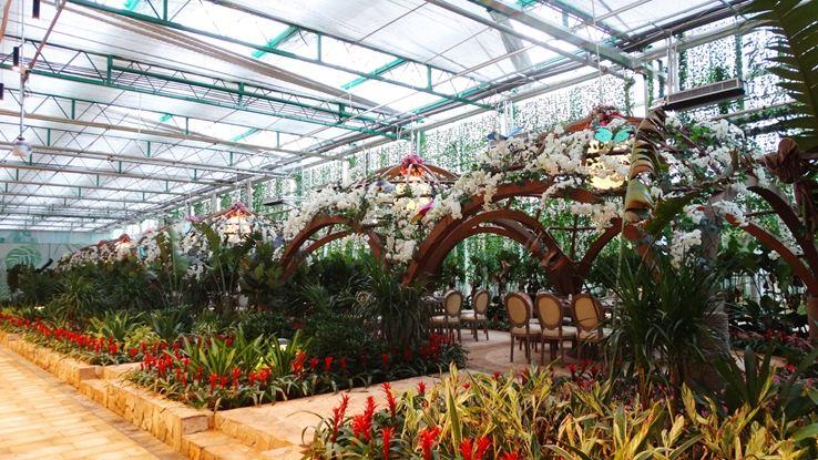 桂林洋國家熱帶農業公園2