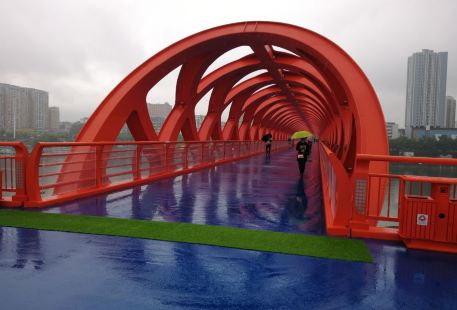 滄浪洲生態濕地步行橋