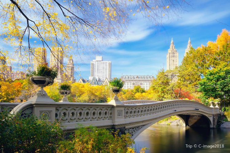 中央公園4