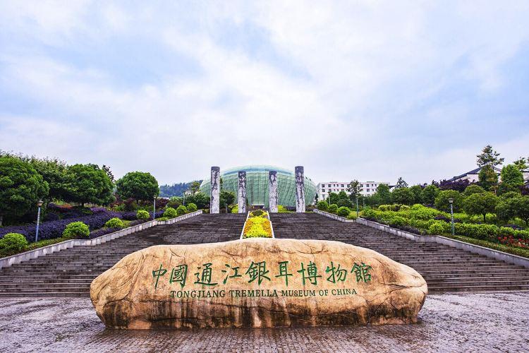 Tongjiangyin'er Museum1