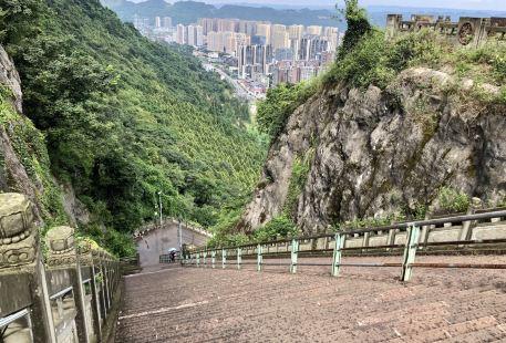 金鳳山公園