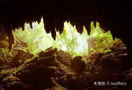 Parque Nacional of thes Cavernas del Rio Camuy