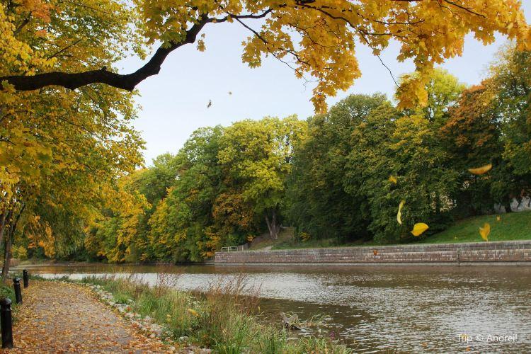 Aura joki / Aura river1